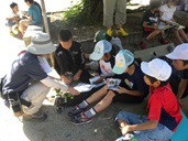 2012 Environmental Study Sessions for Elementary Students